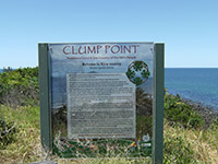 Clump Point Information Point